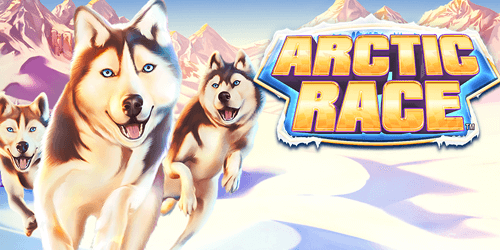 arctic race slot