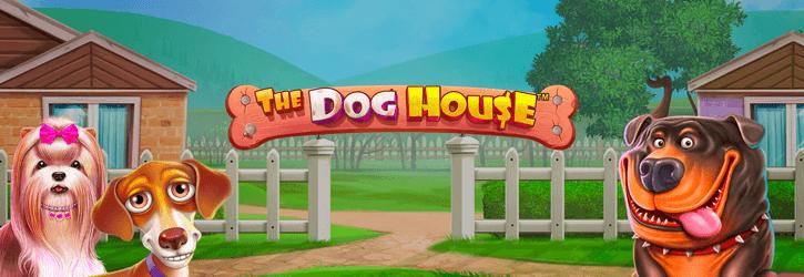 the dog house slot pragmatic