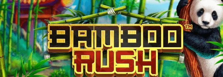 bamboo rush slot betsoft