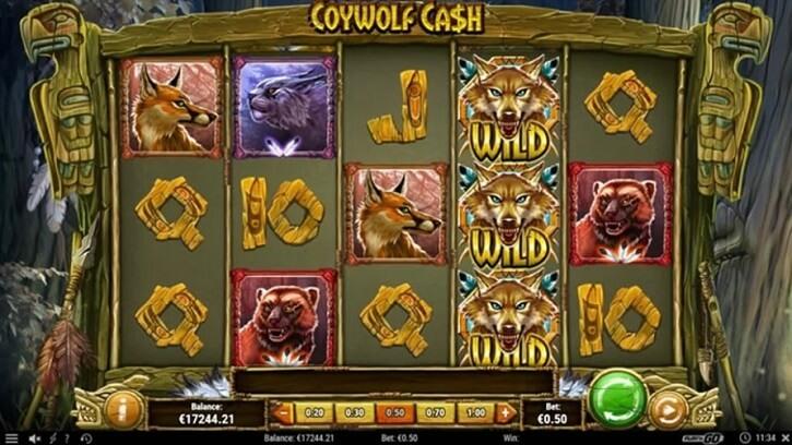 coywolf cash slot screen