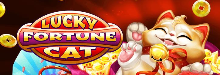 lucky fortune cat slot habanero