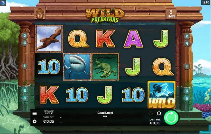 wild predators slot screen