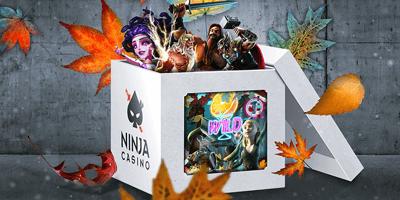 ninja kasiino novembrikuu valjakutsed