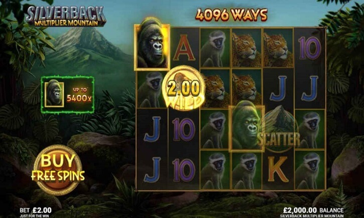 silverback multiplier mountain slot screen
