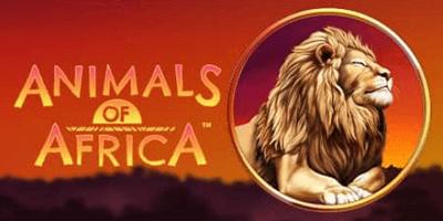 animals of africa slot