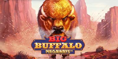 big buffalo megaways slot